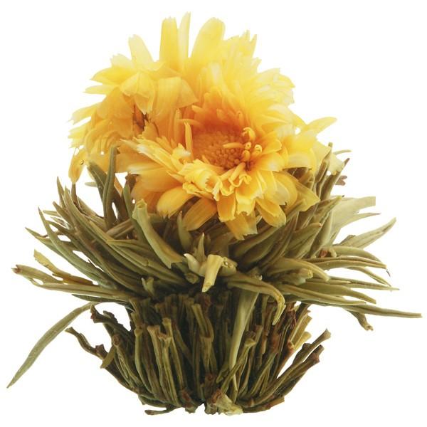 fleur de thé simple