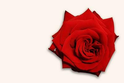 cadeau de noel amour