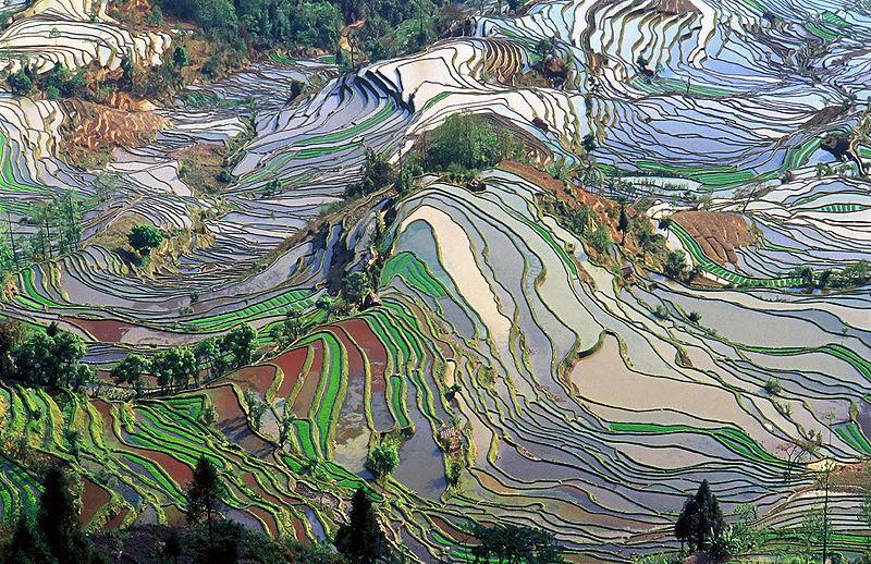 voyage_Yunnan
