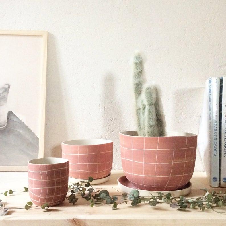 pot de fleurs cactus