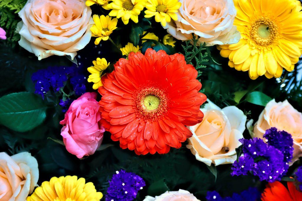 Cadeau pour tous, chasse aux trésors, jeu de piste, bouquet de fleurs